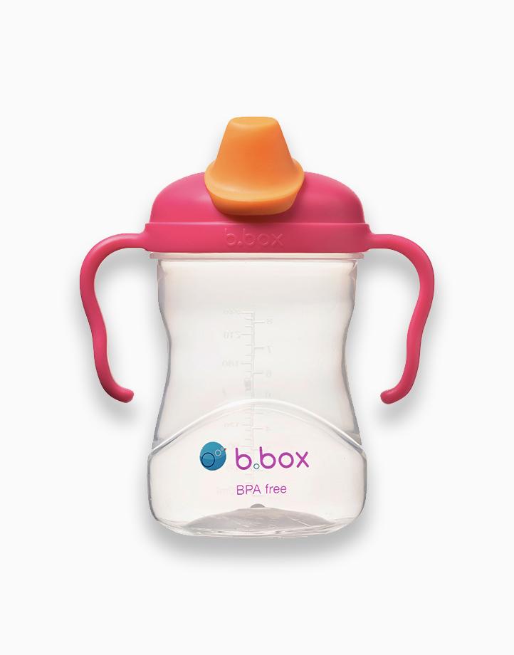 Spout Cup (8oz) by b.box | Raspberry