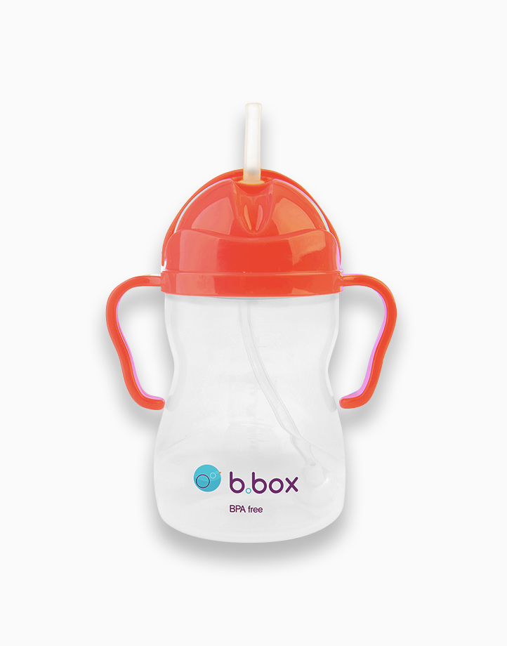 Sippy Cup with Weighted Straw (8oz) by b.box | Watermelon