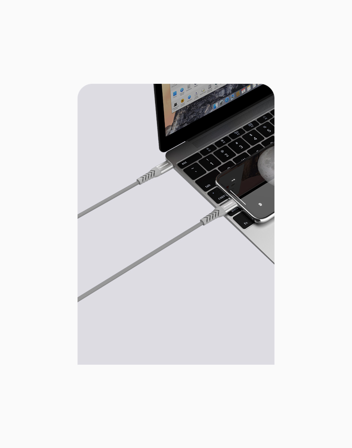 Flex Pro 1.2m Type C to Type C Cable by thecoopidea   Grey