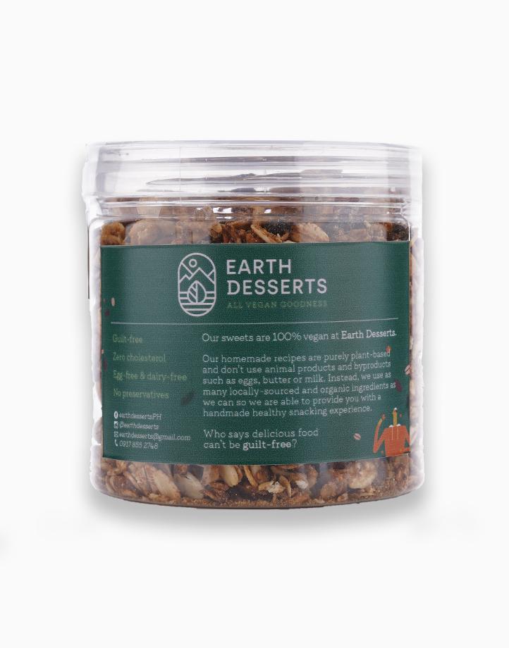 Vegan Peanut Butter Pretzel Granola (160g) by Earth Desserts