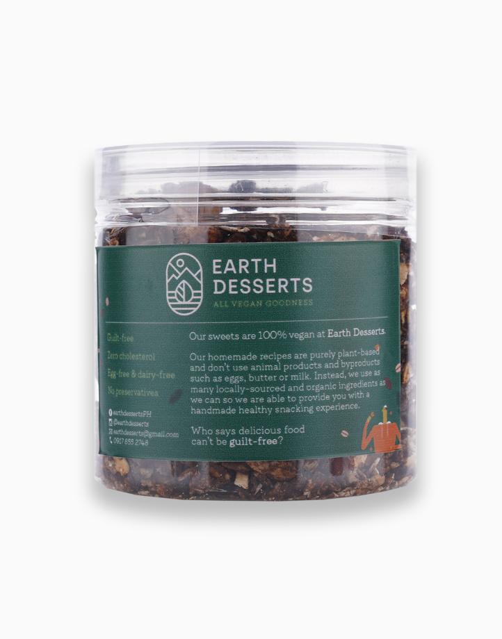 Vegan Dark Choco Sea Salt Granola (160g) by Earth Desserts