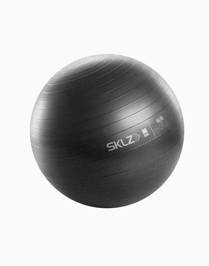 Pro Stability Ball (65cm) by SKLZ