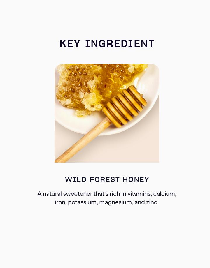Wild forest honey %28dark%29 3