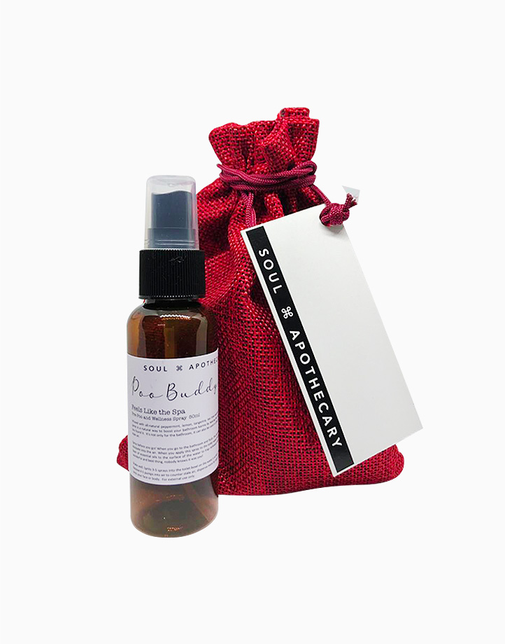Wellness Spray in Maroon Gift Pouch by Soul Apothecary | Poo Buddy - Feels Like the Spa