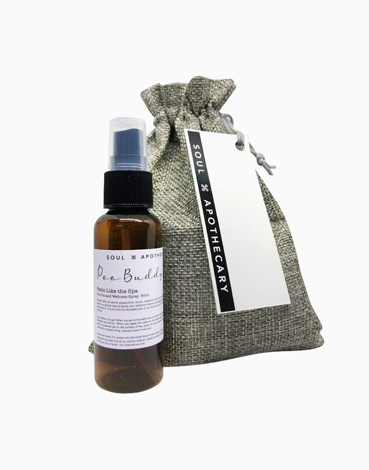 Wellness Spray in Gray Gift Pouch by Soul Apothecary | Poo Buddy - Feels Like the Spa