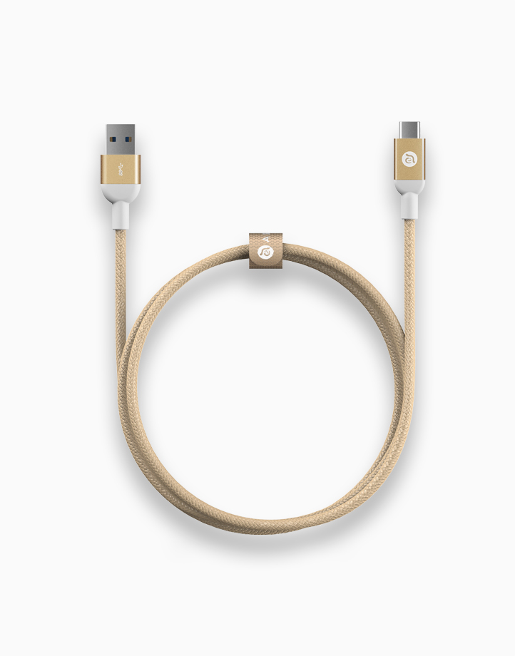 CASA M100USB 3.1 USB Type C (USB-C) to Standard Type A Male 3.0 (Gold) by Adam Elements