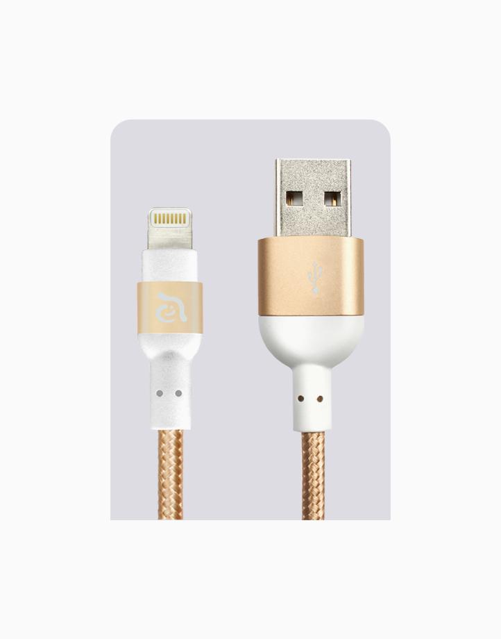 Peak II Cable MFi Lightning (120cm) by Adam Elements | Gold