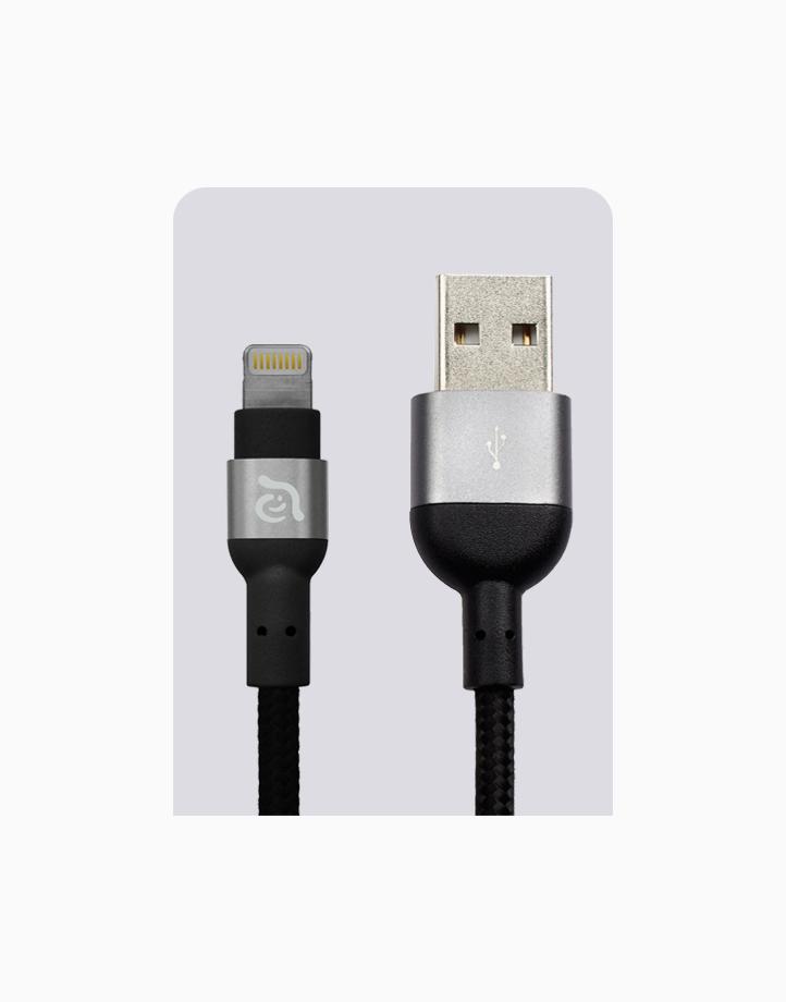 PeAk II Cable MFi Lightning (300cm) by Adam Elements | Gray