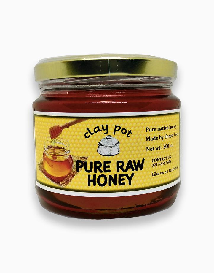 Pure Raw Honey by Clay Pot