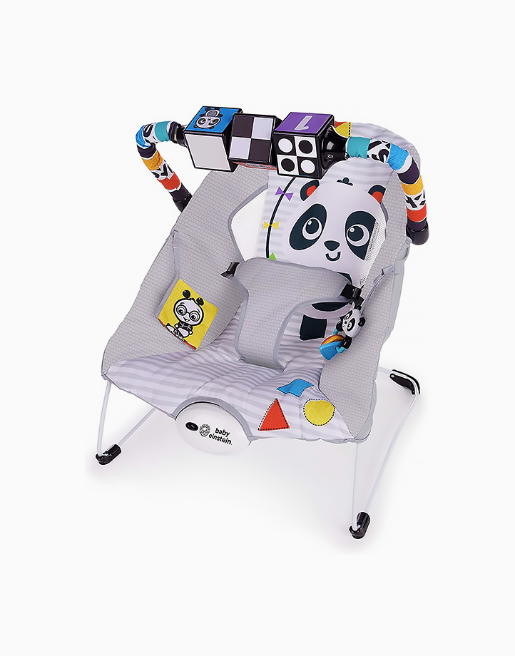 Baby Einstein More to See High Contrast Bouncer by Bright Starts
