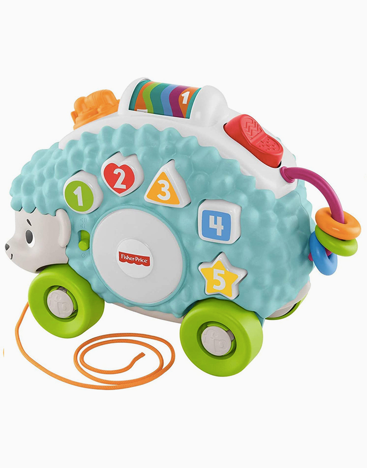 Infant Happy Shapes Hedgehog by Fisher Price