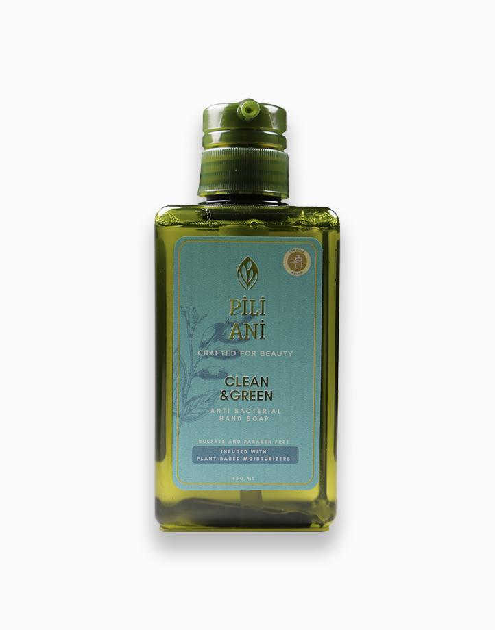 Clean & Green Anti-Bacterial Hand Soap (450ml) by Pili Ani