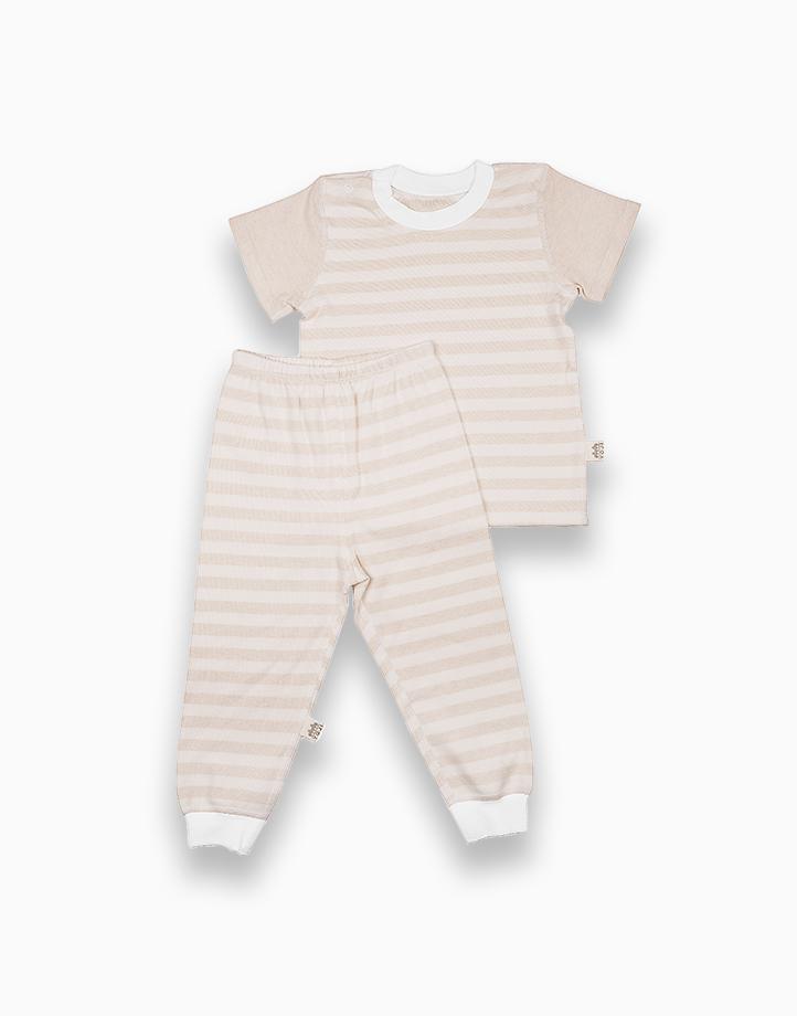 Short Sleeve Shirt and Pajamas Bundle (Beige) by YOJI WEAR | Size 80