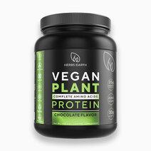 Vegan plant 1