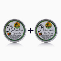 Re b1t1 the tropical shop natural dalandan lip balm