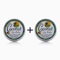 Re b1t1 the tropical shop natural coconut lip balm