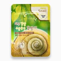 29232 snail mask 1
