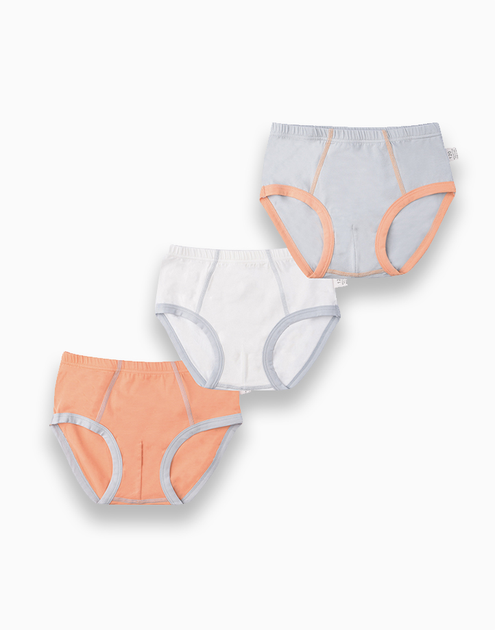 Clarion Three-Pack Briefs for Boys by Meet My Feet   130