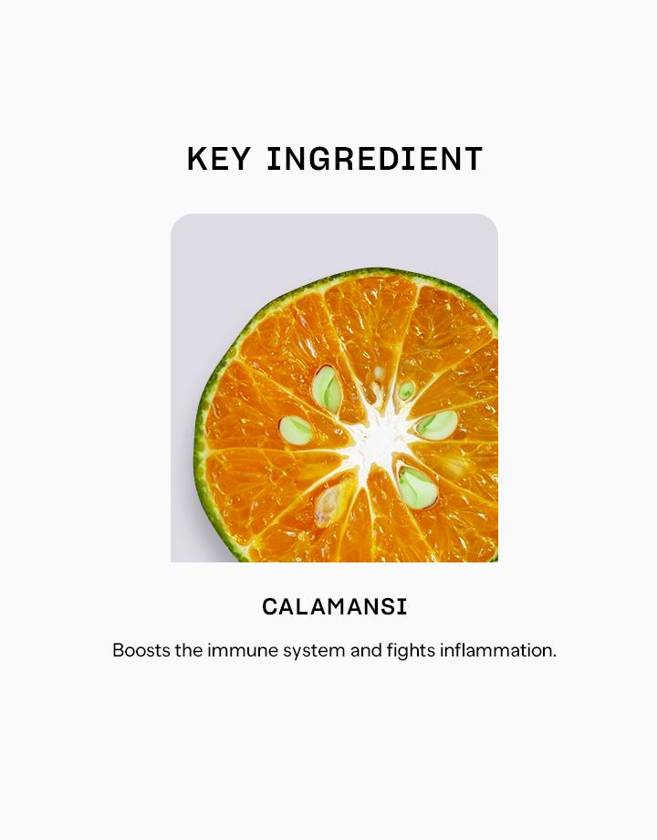 14026 calamansi fruit powder %28125g%29 1