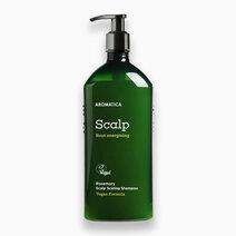 Rosemary Scalp Scaling Shampoo (400ml) by Aromatica