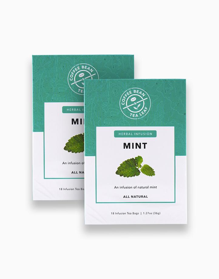 Fresh Leaf Tea Mint (2g x 18 sachets) (2 boxes) by The Coffee Bean & Tea Leaf