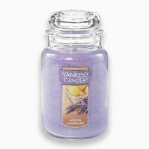 Lemon Lavender Large Jar Candle by Yankee Candle