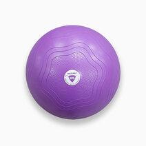 Livepro 55 cm gym ball