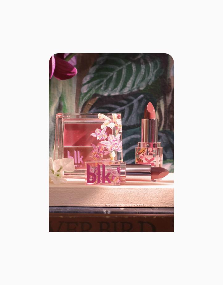 blk cosmetics x Solenn Thylane Set + Pink Foil by BLK Cosmetics