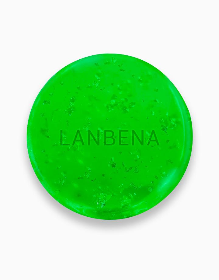 24K Tea Tree Oil Handmade Soap by Lanbena
