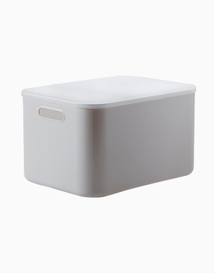 Shimoyama Large Gray Deep Storage Box (With Lid) by Simply Modular