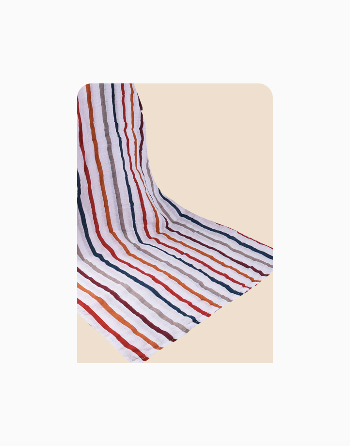 2-Layer Swaddle by Meet My Feet   Colorful Stripes