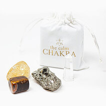 Fullest Potential Wealth + Success Kit (Mini with Small Pyrite) by The Calm Chakra
