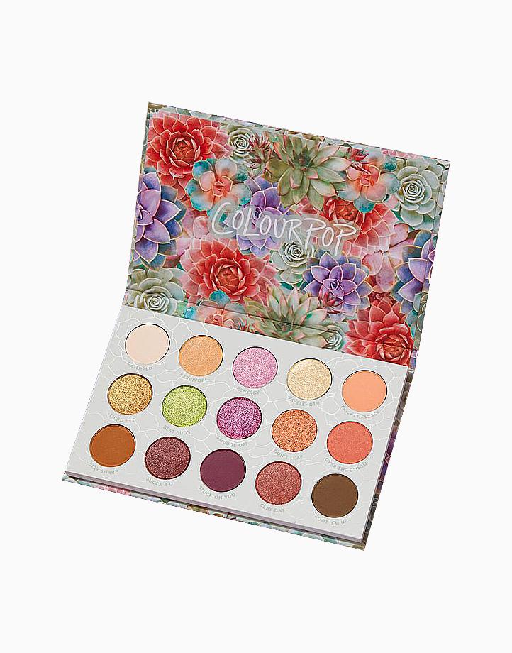Garden Variety Palette by ColourPop