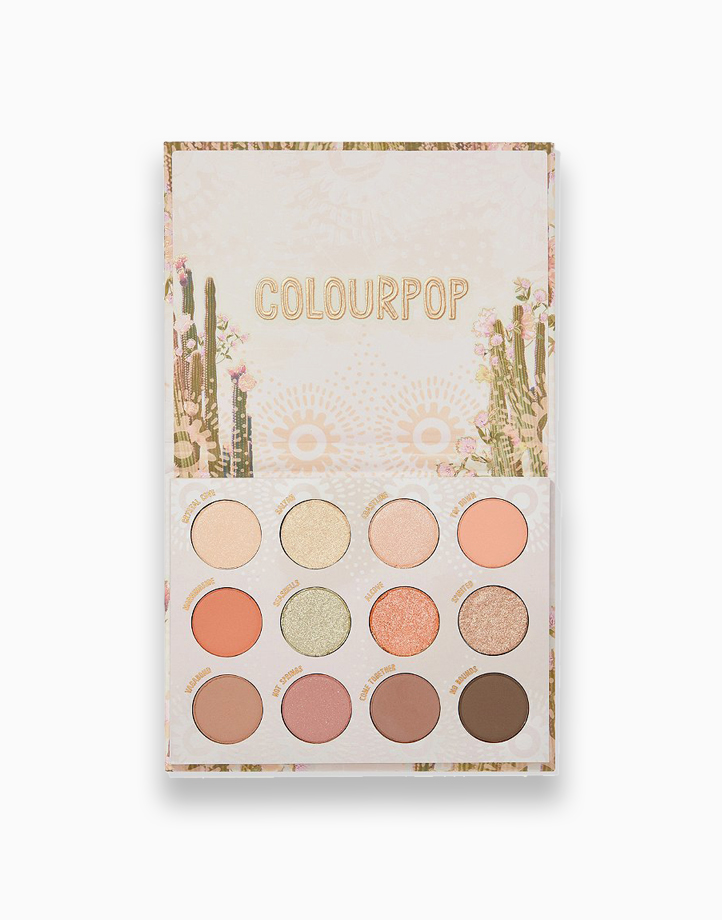 Wild Nothing Palette by ColourPop