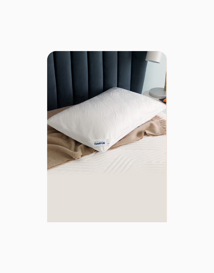 Traditional Pillow (Firm) by Tempur