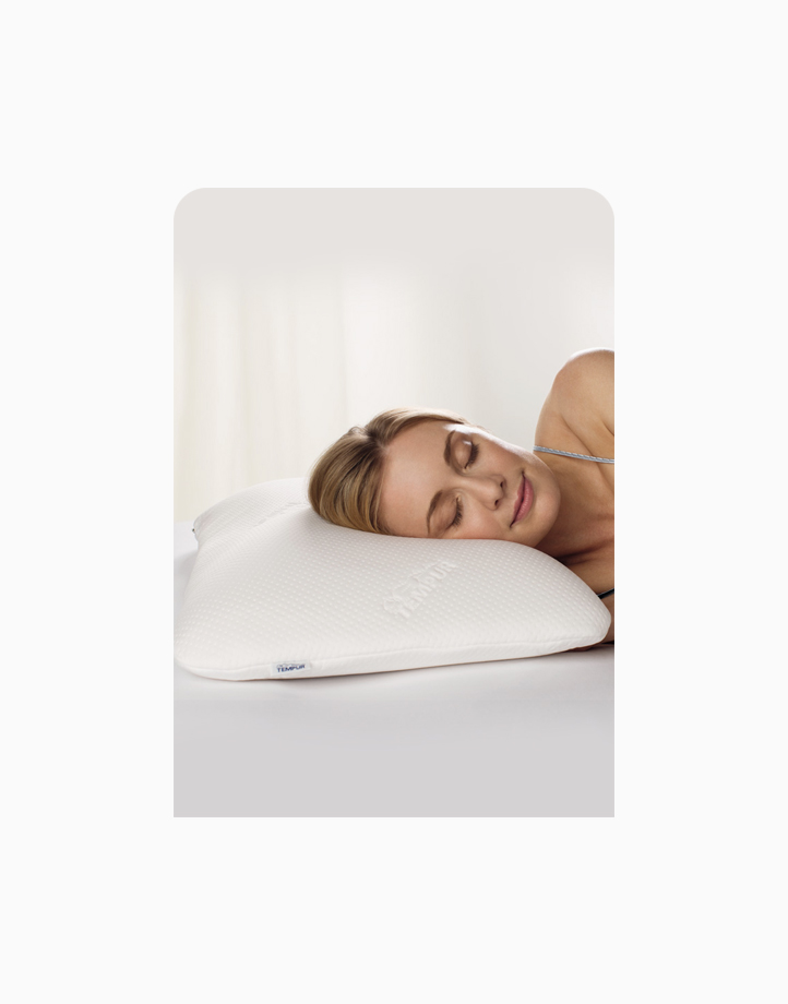 Symphony Pillow (Large) by Tempur