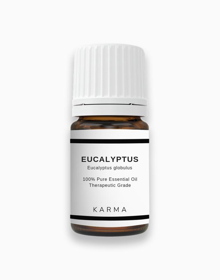 Eucalyptus Essential Oil (5ml) by KARMA
