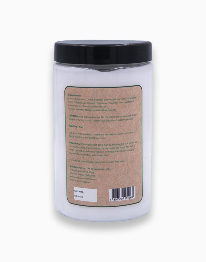 Curls by Zenutrients Avocado & Tea Tree Protein-Free Deep Conditioner (850g) by Zenutrients