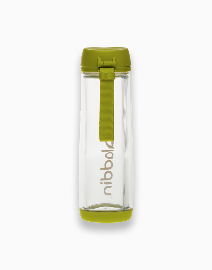 Glass-Lined Water Bottle (18 oz.) by Aladdin   Moss