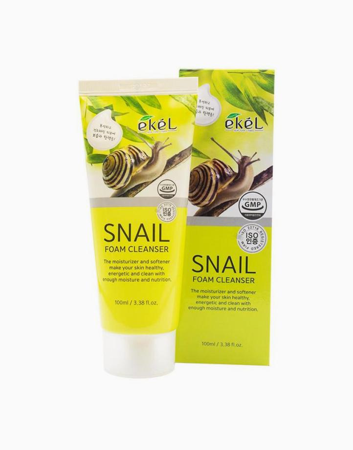 Snail Foam Cleanser (100ml) by Ekel