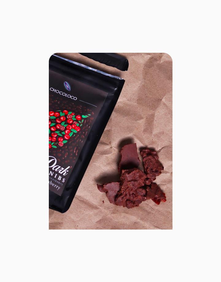 Sugar Free Dark Choco with Cranberry (45g) by Chocoloco