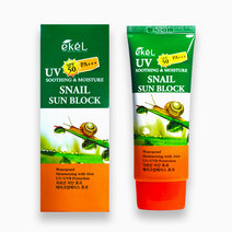 Sunblock snail