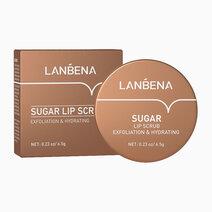Sugar Lip Scrub by Lanbena