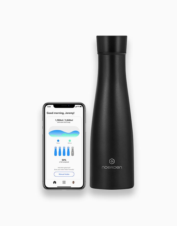 Liz Smart Bottle (480ml) - Black by Noerden