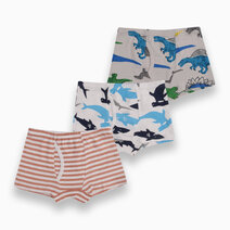 Reed 3-Pack Boxer Briefs for Boys by Meet My Feet