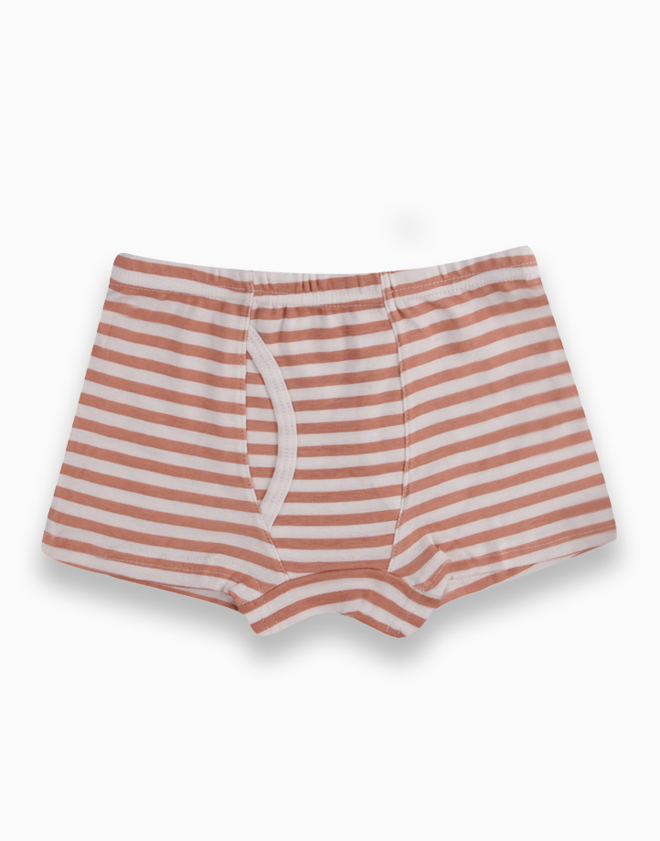Reed Three-Pack Boxer Briefs for Boys by Meet My Feet |