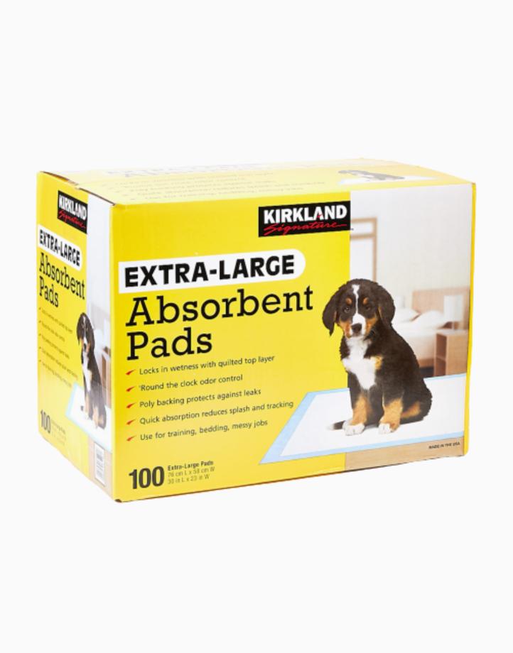Extra Large Absorbent Pads (76cmx58cm) - 100 Pcs. by Kirkland