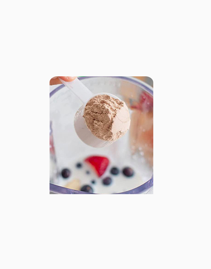 Organic Protein Plant Based Protein Powder - Creamy Chocolate Fudge (2.03lbs / 920g) by Orgain