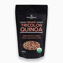 Quinoa Tricolor (300g) by UrbanGreens Market