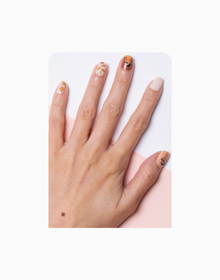 STYX by Luxx Nail Wraps - Morocco Chic (Designer) by Luxx Lash